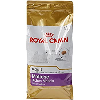 Amazon Com Royal Canin Maltese 24 Canine Adult Dry Dog