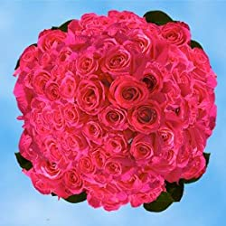 200 Fresh Cut Hot Pink Roses for Valentine's Day | Versilia Roses | Fresh Flowers Express Delivery | The Perfect Valentine's Day Gift