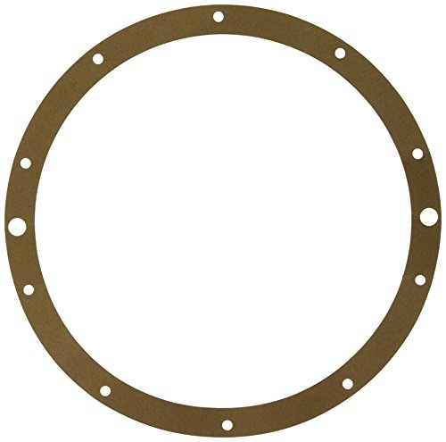 Hayward SPX0506D Niche Gasket for Underwater Lights, Vinyl