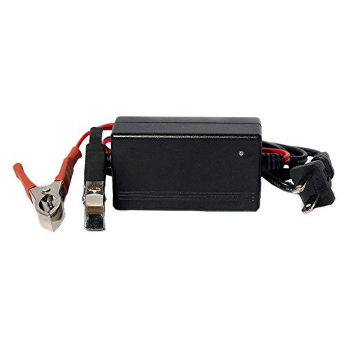 12V 1Amp Charger Maintainer for Amstron 12V 3.2Ah Battery - Mighty Max Battery brand product