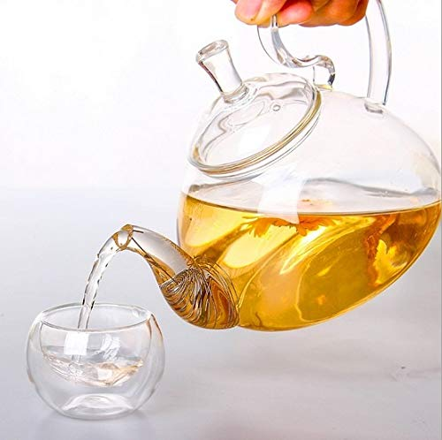 Majinz Store Coffee Pots Heat Resistant High Handle Flower Coffee Glass Tea Pot