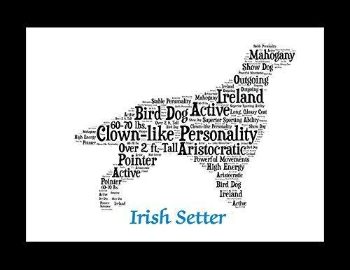 (Irish Setter Dog Wall Art Print - Personalized Pet Name - Gift for Her or Him - 11x14 matted - Ships 1 Day)