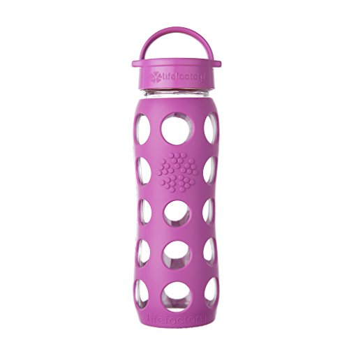 Lifefactory 22-Ounce BPA-Free Glass Water Bottle with Leakproof Classic Cap and Silicone Sleeve, Huckleberry