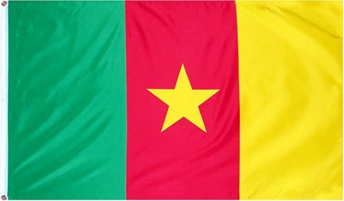 NEW 3x5 Cameroon National Flag 3'x5' World Cup Banner