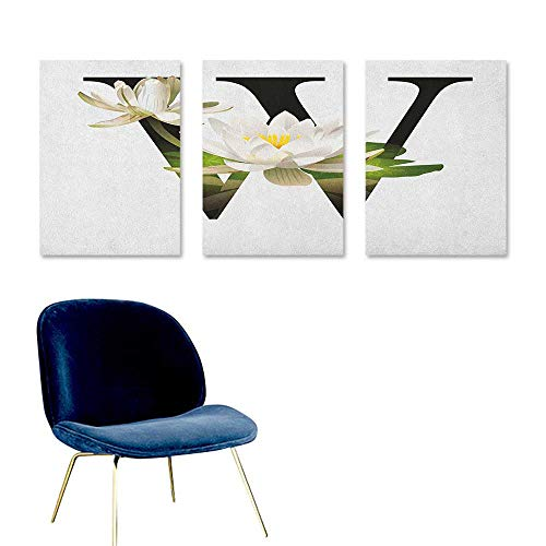 nting Water Lily Flower Arrangement Nature Inspired Alphabet Design Floral Print Modern Decorative Artwork 3 Panels 16x31inch White Green Black ()
