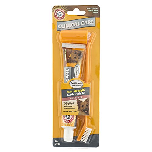 (Arm & Hammer Clinical Pet Care Dental Gum Health Kit for Dogs | Contains Toothpaste, Toothbrush & Fingerbrush | Soothes Inflamed Gums, 3-Piece Kit, Beef Flavor)