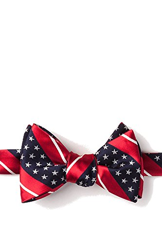 Mens American Flag Freedom Stars & Stripes Self Tie Butterfly Bow (White Stripe Self Tie)