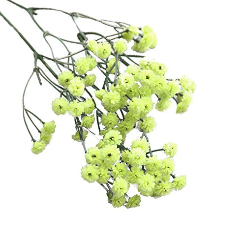 weiadinga Gypsophila Fake Flower Artificial Flower Two Forks 90 Green, Two Forks 90 Red Rose Ray Silk Fake Flower Wedding Bouquet Party Decoration ()