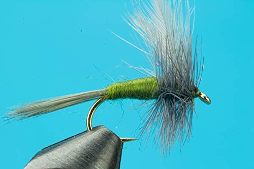 Big Y Fly Co Blue Wing Olive-One Dozen-Size 16