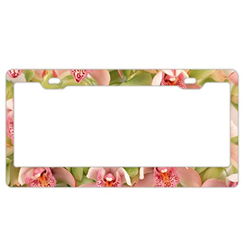 (YEX Abstract Orchids Flowers Spotted6 License Plate Frame Car License Plate Covers Auto Tag Holder 6