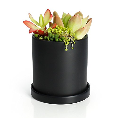 Greenaholics Plant Pots - 4.3 Inch Ceramic Matt Surface Cylinder Planters for Succulents, Cactus, Flower Planting, with Drainage Hole and Tray, Matt (Black Pot)