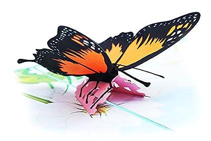 Popseen tarjeta de mariposa desplegable, tarjeta 3D, tarjeta ...