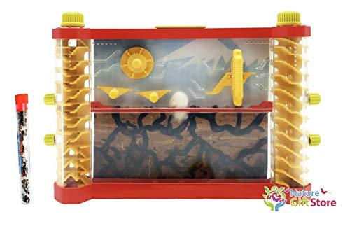 - Nature Gift Store Interactive Ant Farm Shipped with Live Ants: See-Saws, Merry-go-Round, Ladders