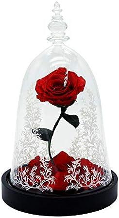 HY&PPJQ Regalo de San valentín La Bella y la Bestia Rosa Caja de Regalo Principito Flor eterna,Tanabata Día de San valentín Creativo-A: Amazon.es: Hogar