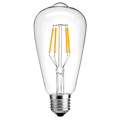 Incandescent Equivalent Squirrel Nostalgic Filament
