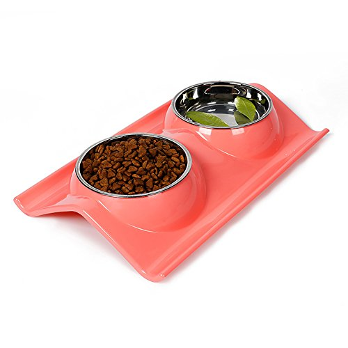 - Double Dog Cat bowls Premium Stainless Steel Pet Bowls With No-Spill Resin Station Pet Food Water Feeder