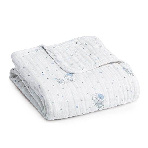aden anais Muslin Dream Blanket