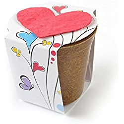 "Bloomin Seed Paper - Planting Kit Favor ""Love Grows"" (LG-Red Heart)"