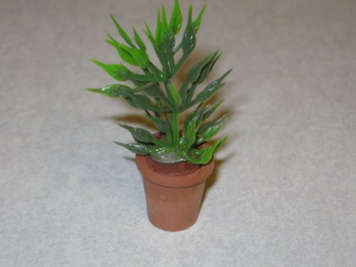 Review Timeless Miniatures-Large House Plant