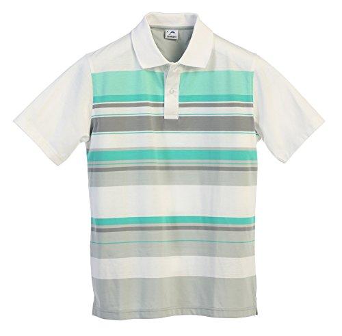 Striped Mens Shirt Sleeve Short (Gioberti Mens Modern Fit Striped Short Sleeve Polo Shirt, Mint, Medium)