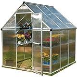 Palram Nature Series Mythos Hobby Greenhouse - 6' x 6' x 7', Silver