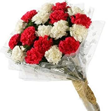 Floral Fantasy Fresh Flowers Bouquet Of 10 Red White Carnations Bunch For Birthday Anniversary Friendship Day Best Wishes