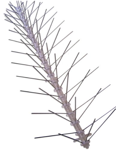 Bird-X Stainless Steel Bird Spikes, Covers 100 feet
