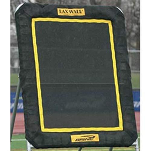 Brine Lacrosse Lax Rebound Wall Replacement Mat (3 x 4-Feet, Black)