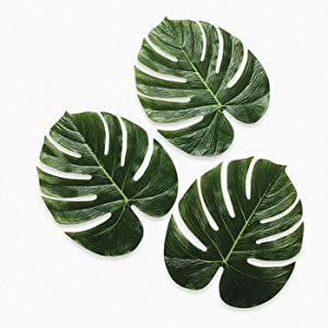 Amazon.com: Palm Leaves - Party Decorations & Room Decor