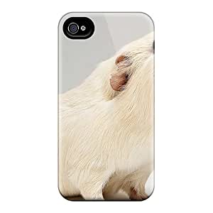 Awesome Design Guinea Pigcute Little Animals 05 Hard Case Cover For Iphone 4/4s