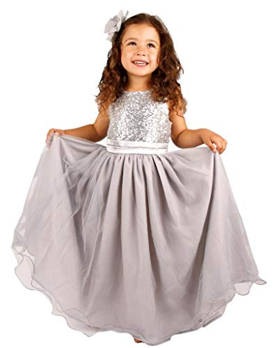Bow Dream Flower Girl's Dress Sequins Tulle Silver 4T