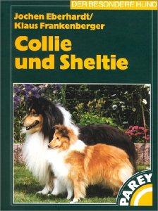 collie-und-sheltie
