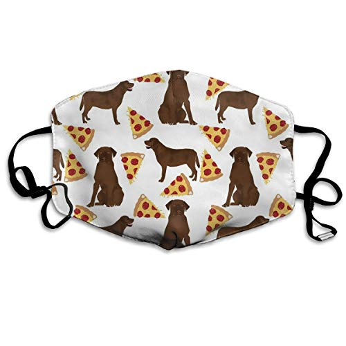 Niwaww Chocolate Labrador Pizza Christmas Stockings Gift Card Bags Holders,Bulk Personalized Holiday Treats for Neighbors Coworkers Kids Cats Dogs,Xmas Tree Decorations Set