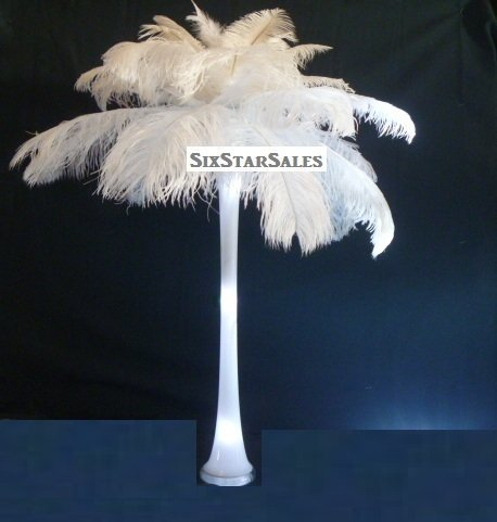 Special 72 hr. Sale White Ostrich Feathers Wholesale Bulk 14/17'' Long Deluxe Tail Plume Feathers White Qty 100 by Six Star Sales by 14/17BlWhtx100 (Image #4)