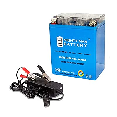 Mighty Max Battery YTX14AH Gel Replaces Ariens 8028 Gravely Riding Mower + 12V 2A Chargr Brand Product