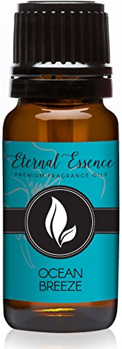 Eternal Essence Oils Ocean Breeze Premium Grade Fragrance Oil - 10ml - Scented Oil ()