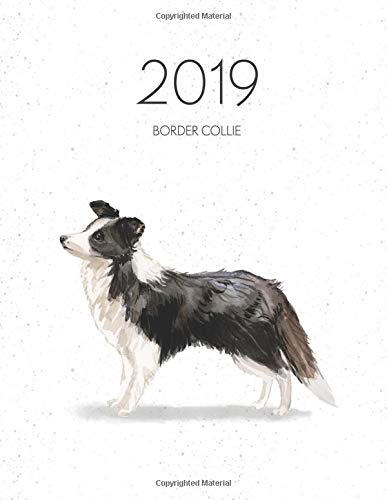2019 Border Collie: Dated Weekly Planner With To Do for sale  Delivered anywhere in Canada