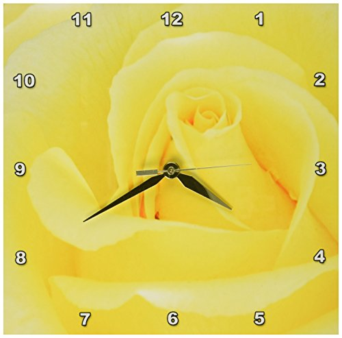 Yellow Rose Flower Macro Floral Photography Closeup Flowers-Romantic Lovely Beautiful Sunny Flora-Wall Clock, 10 by 10-Inch (Beautiful Rose Flowers)