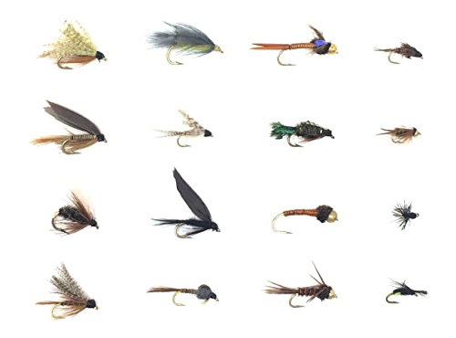 Feeder Creek Fly Fishing Flies Wet and Nymph Assortment for Trout Fishing and Other Freshwater Fish - 16/32 / 48-16 Patterns of Adams, Mayflies, Attractors, Worm, Bead Heads and More (48)