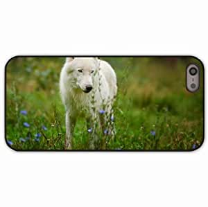 iPhone 5 5S Black Hardshell Case arctic wolf predator wolf Desin Images Protector Back Cover