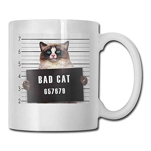 Cat Ceramic Mug Bad Gang Cat in Jail Kitty Under Arrest Criminal Prisoner Hangover Artsy Work Latte Brown Black White 11oz