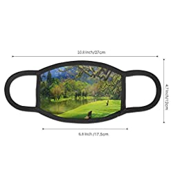 Comfortable Windproof mask,Panoramic View Of Public Lake Garden At Asian Park Idyllic Landscape,Printed Facial decorations for Women and Men