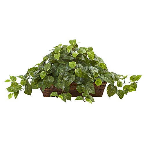 Nearly Natural Pothos with Ledge Basket, Green