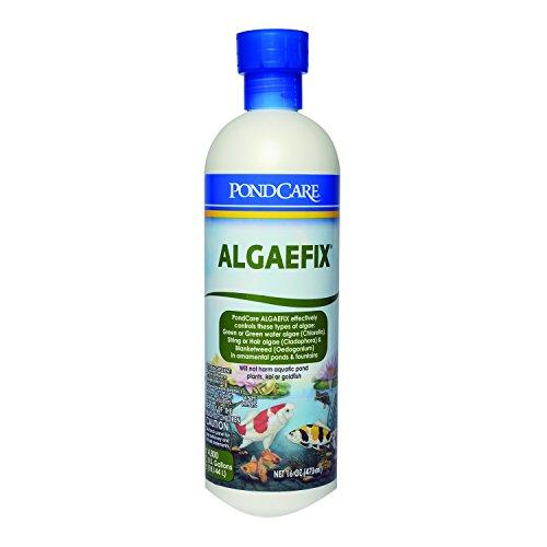 Mars Fishcare Aquarium Pharmaceuticals Pondcare Algae Fix 16oz (169b)