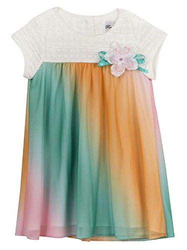 Rare Editions Girls Pastel Lace Chiffon Spring Dress (12m-4t) (4t)