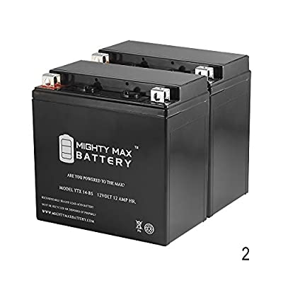 YTX14-BS 12V 12AH Replaces Yamaha Bruin Grizzly YFM 250 350 - 2 Pack - Mighty Max Battery brand product