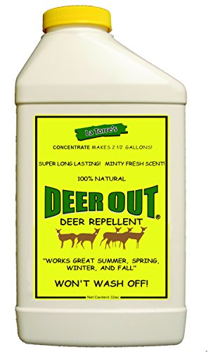 - Deer Out 32oz Concentrate Deer Repellent