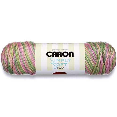 (Caron Simply Soft Paints Yarn (4) Medium Worsted Gauge 100% Acrylic - 5 oz -  Paints Rose Garden -  Machine Wash & Dry)