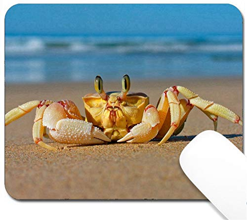 MSD Mouse Pad with Design - Non-Slip Gaming Mouse Pad - Image ID: 569442 Alert Sand Crab on Beach Southern Africa
