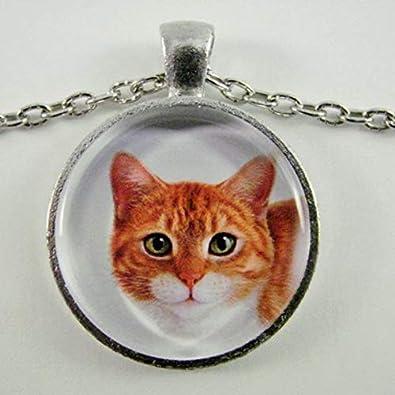 Collar pequeño de Elf Clásico Tabby para Amantes de los Gatos ...